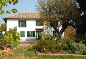Casa e terreno - Ponzano Monferrato
