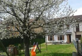 Casa e terreno- Castagnole Monferrato